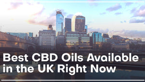 The 7 Best CBD Oils Available in the UK Right Now