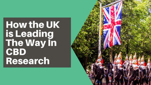 The UK is Leading The Way In CBD Research