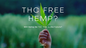 Will Hemp Be THC Free in the Future?