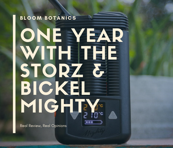 One Year with the Mighty Vaporizer | A Real Review