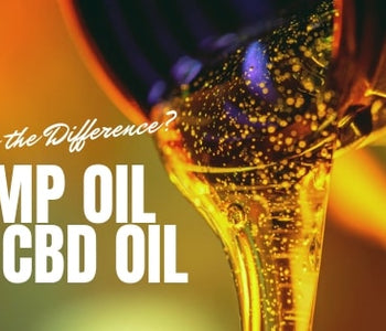Hemp Oil VS CBD Oil... What's the Difference?