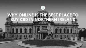 Why Online is the Best Place to Buy CBD in Northern Ireland
