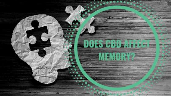 Does CBD Affect Memory?
