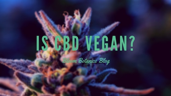 Is CBD Vegan?