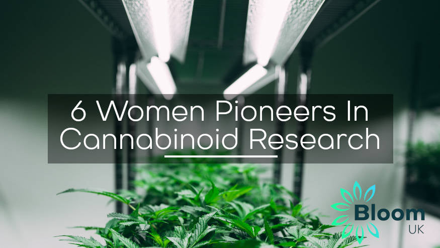 6 Women Pioneers in Cannabinoid Research