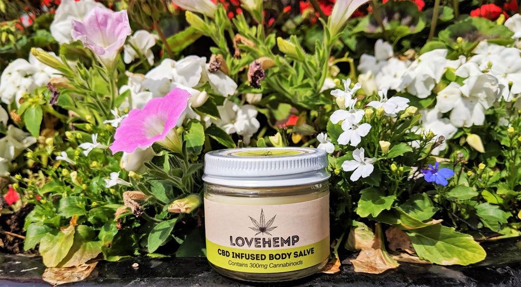 Love Hemp CBD Body Salve
