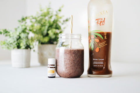 CBD Oil, Smoothie in glass jar, and plastic bottle of fruit juice all side by side with two small plants in the background