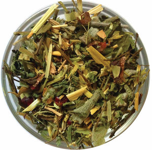 Nourishing Fennel Seed-Carob | Ein Gedi Blend - ShalvaTea Kosher Israeli Herbal Teas