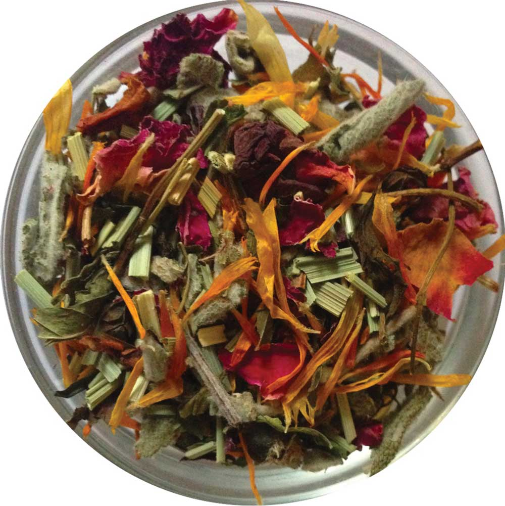 Harmonizing Lemongrass-Hibiscus | Jerusalem Blend - ShalvaTea Kosher Israeli Herbal Teas