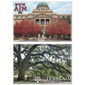 Texas A&M 2-Pack Magnets