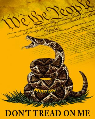 Gadsden We The People Single Sided Flag Rough Tex ® 3'x5' 100D