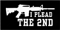 I Plead The 2nd Bumper StickerI Plead The 2nd Bumper Sticker