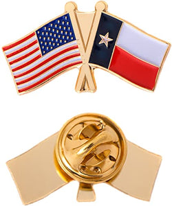 USA & Texas - Cloisonne Hat & Lapel Pin