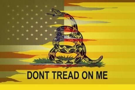 12 3'X5' AMERICAN GADSDEN 3'X5' 100D FLAGS BY THE DOZEN WHOLESALE PER DESIGN!