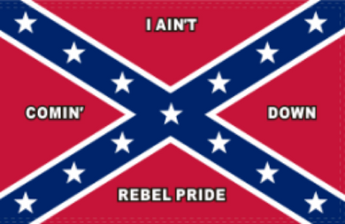 I AIN'T COMING DOWN II Double Sided Flag Rough Tex ® 2'x3' 100D