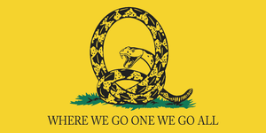 Q ANON WHERE WE GO ONE WE GO ALL GADSDEN YELLOW BUMPER STICKERS PACK OF 50 WHOLESALE