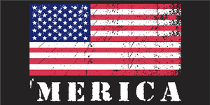 'Merica USA Black 3'X5' Flag ROUGH TEX® 100D