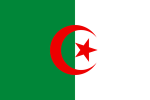 Algeria Flag 3x5ft Poly