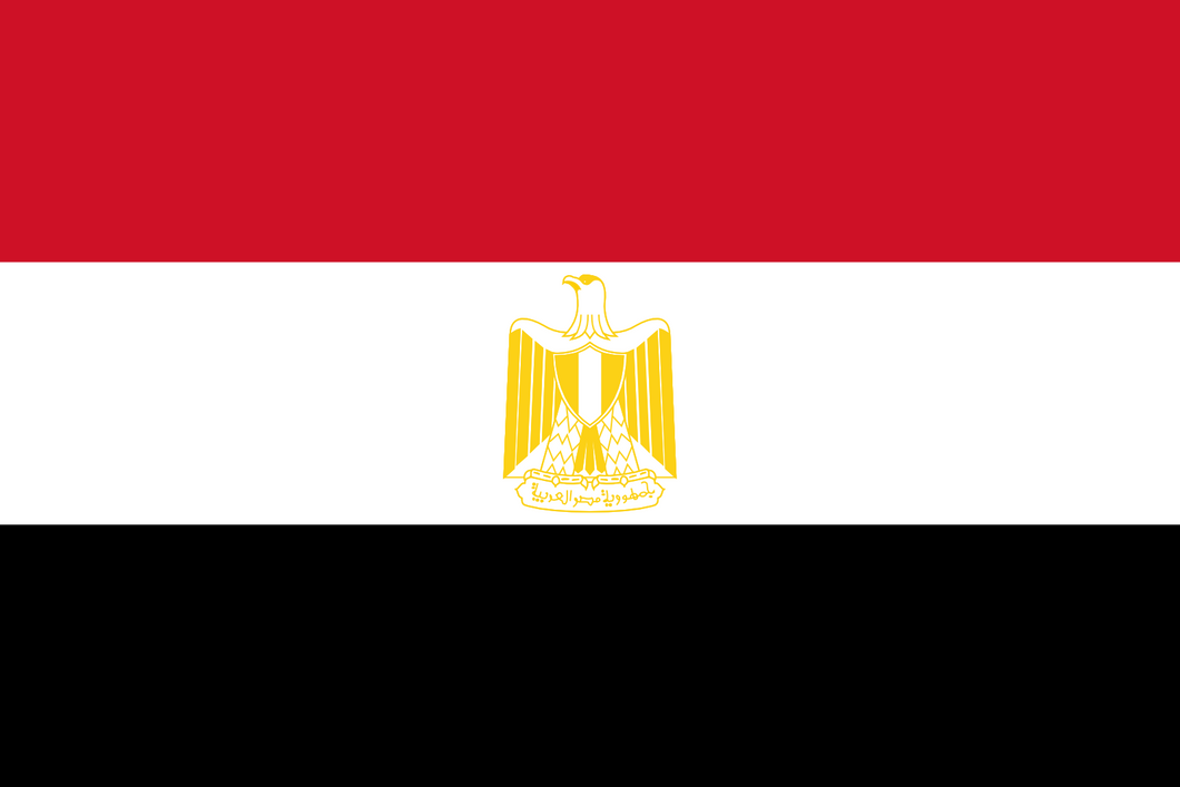 Egypt Flag 3x5ft Poly