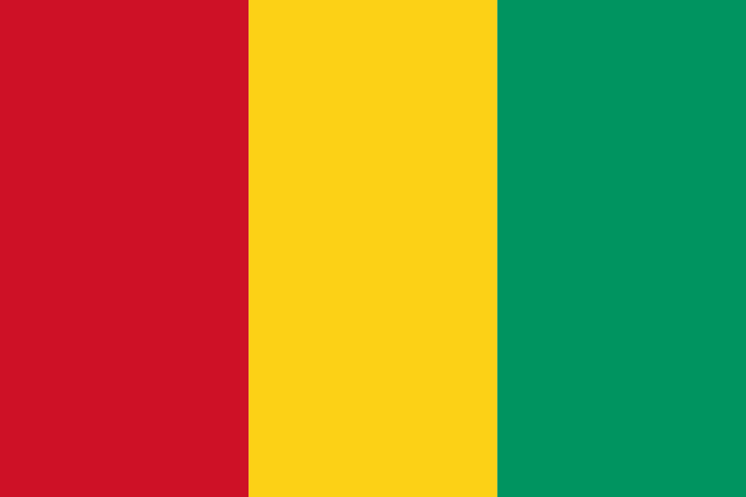 Guinea Flag 3x5ft Poly