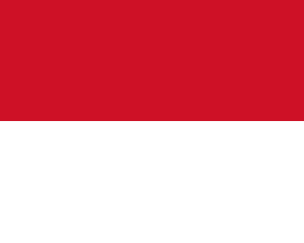 Monaco Flag 3x5ft Poly