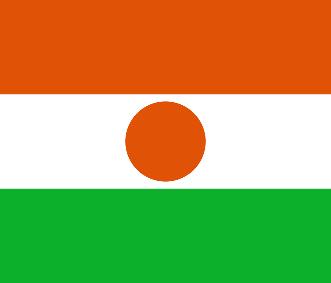 Niger Flag 3x5ft Poly