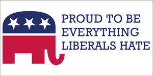 Proud To Be Everything Liberals Hate - Bumper Sticker