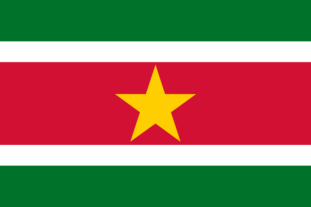 Suriname Flag 3x5ft Poly
