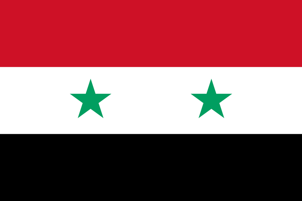 Syria Flag 3x5ft Poly