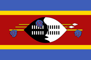 Swaziland Flag 3x5ft Poly