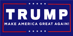 TRUMP II pack of 50 bumper stickers
