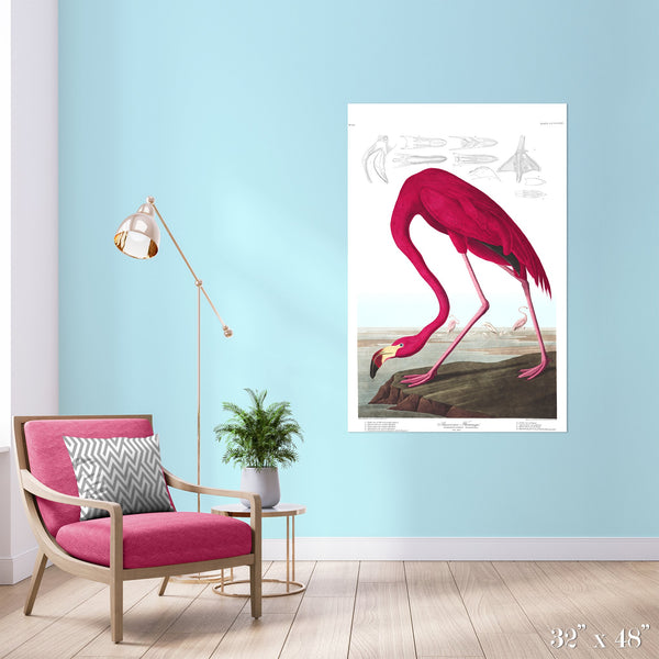 American Flamingo Colossal Art Print - Trendy Custom Wallpaper | Contemporary Wallpaper Designs | The Detroit Wallpaper Co.