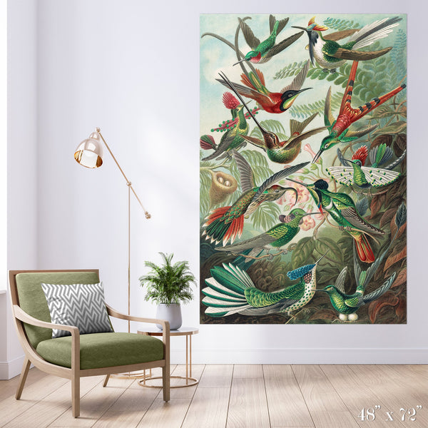Bird Study Colossal Art Print - Trendy Custom Wallpaper | Contemporary Wallpaper Designs | The Detroit Wallpaper Co.
