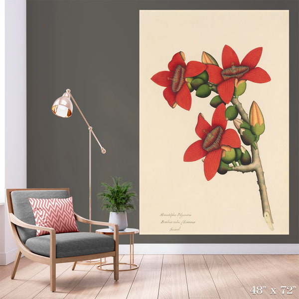 Calcutta Cotton Colossal Art Print