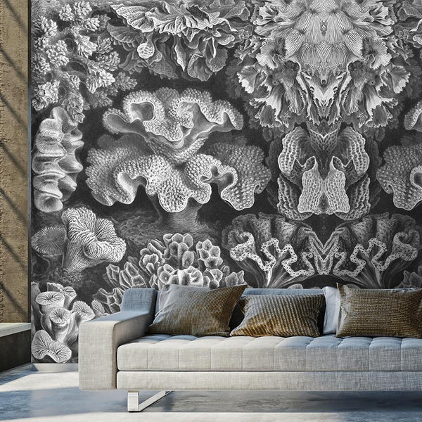 Coral Study Mural - Trendy Custom Wallpaper | Contemporary Wallpaper Designs | The Detroit Wallpaper Co.