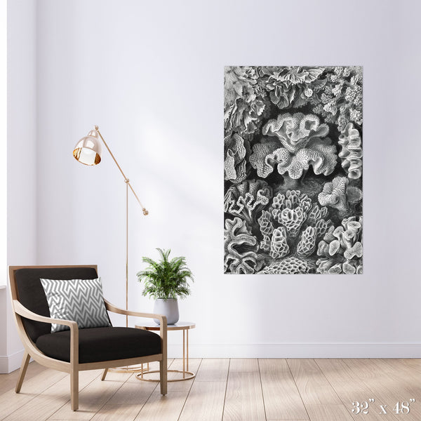 Corals Colossal Art Print - Trendy Custom Wallpaper | Contemporary Wallpaper Designs | The Detroit Wallpaper Co.