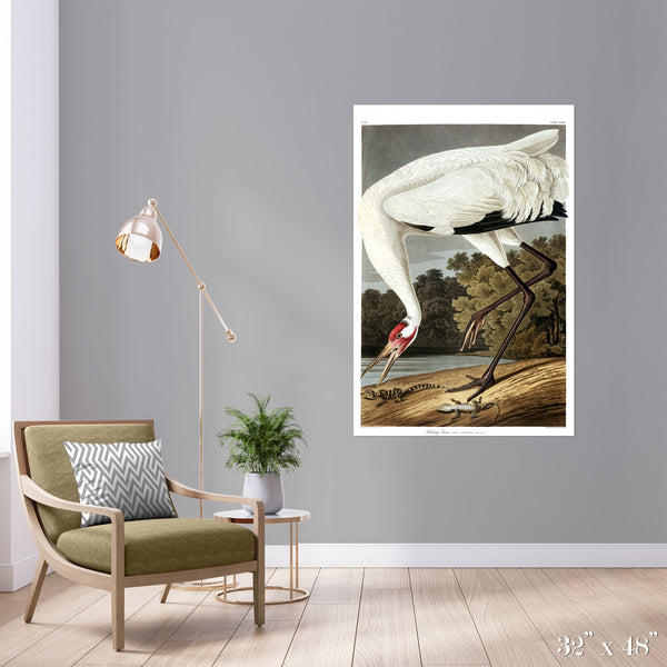 Hopping Crane Colossal Art Print - Trendy Custom Wallpaper | Contemporary Wallpaper Designs | The Detroit Wallpaper Co.