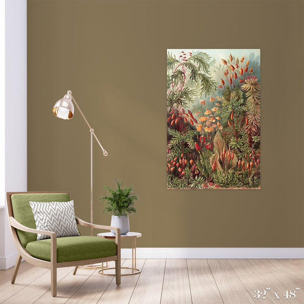 Moss Forest Colossal Art Print - Trendy Custom Wallpaper | Contemporary Wallpaper Designs | The Detroit Wallpaper Co.