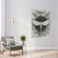 Moth Study Colossal Art Print - Trendy Custom Wallpaper | Contemporary Wallpaper Designs | The Detroit Wallpaper Co.