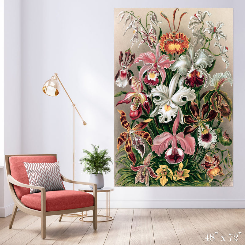 Orchids Colossal Art Print - Trendy Custom Wallpaper | Contemporary Wallpaper Designs | The Detroit Wallpaper Co.