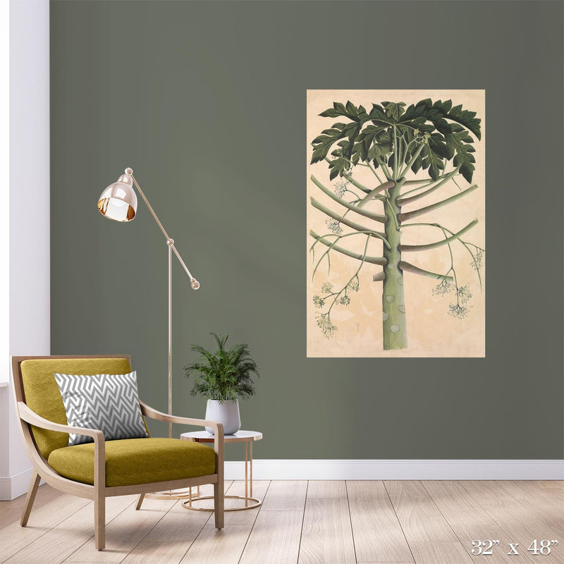 Papaya Tree Colossal Art Print