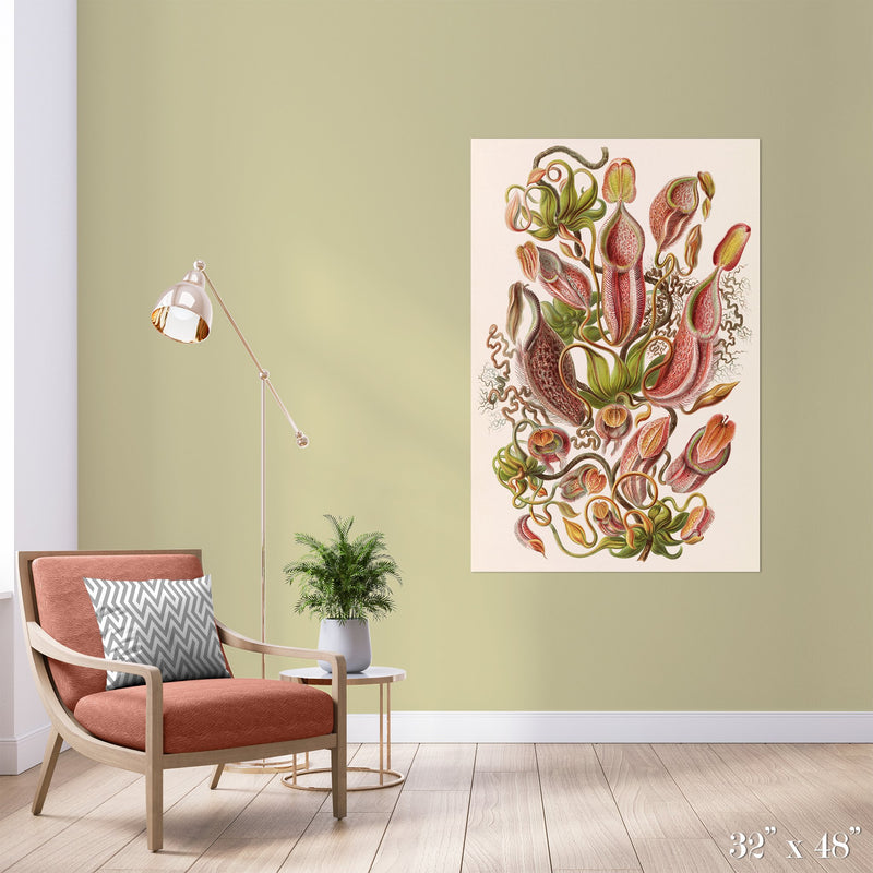 Pitcher Plant Study Colossal Art Print - Trendy Custom Wallpaper | Contemporary Wallpaper Designs | The Detroit Wallpaper Co.
