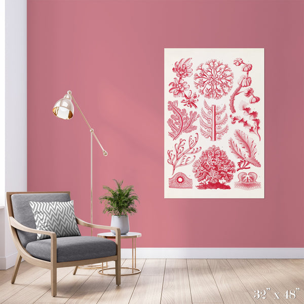 Red Algae Colossal Art Print - Trendy Custom Wallpaper | Contemporary Wallpaper Designs | The Detroit Wallpaper Co.