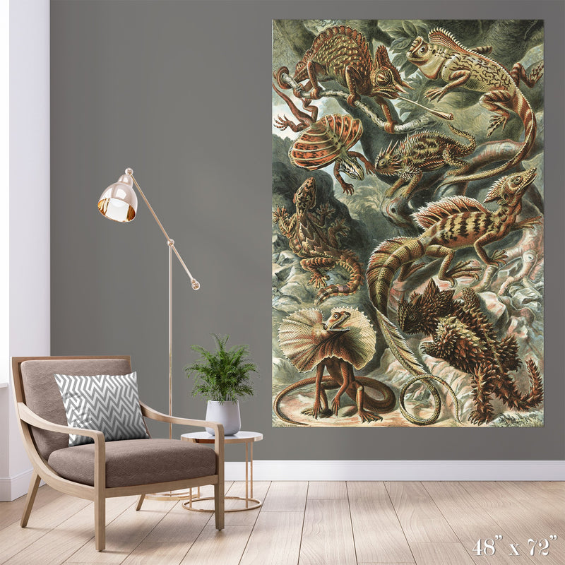 Reptile Study Colossal Art Print - Trendy Custom Wallpaper | Contemporary Wallpaper Designs | The Detroit Wallpaper Co.