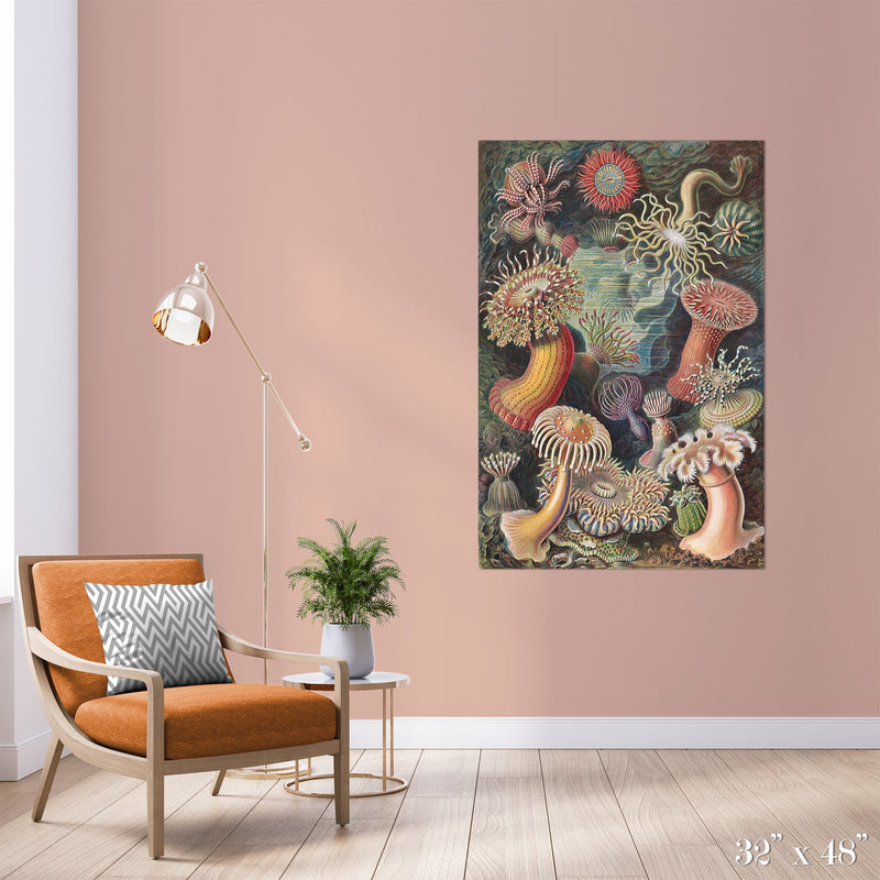 Sea Anemones Colossal Art Print - Trendy Custom Wallpaper | Contemporary Wallpaper Designs | The Detroit Wallpaper Co.