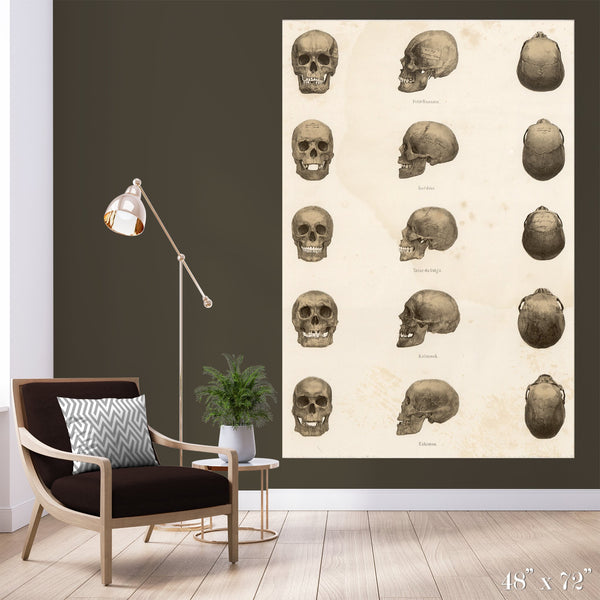 Skulls Colossal Art Print - Trendy Custom Wallpaper | Contemporary Wallpaper Designs | The Detroit Wallpaper Co.