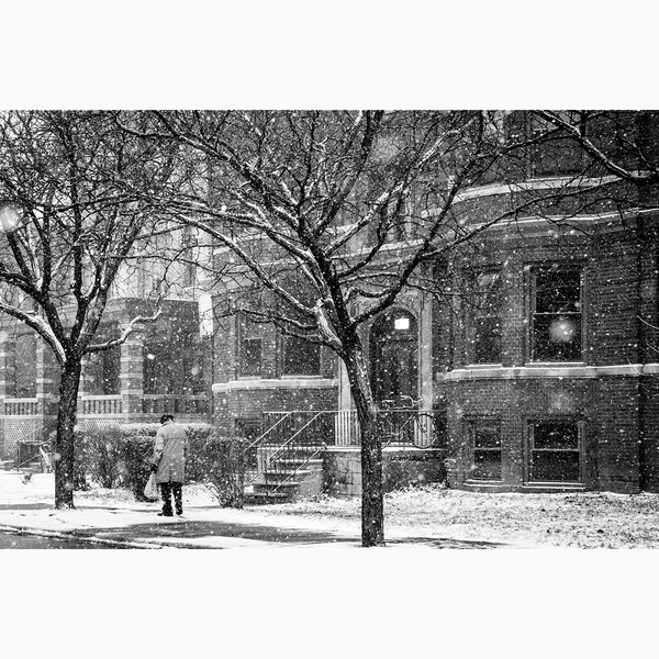 Snow Day <br> Amy Sacka Photography - The Detroit Wallpaper Co.