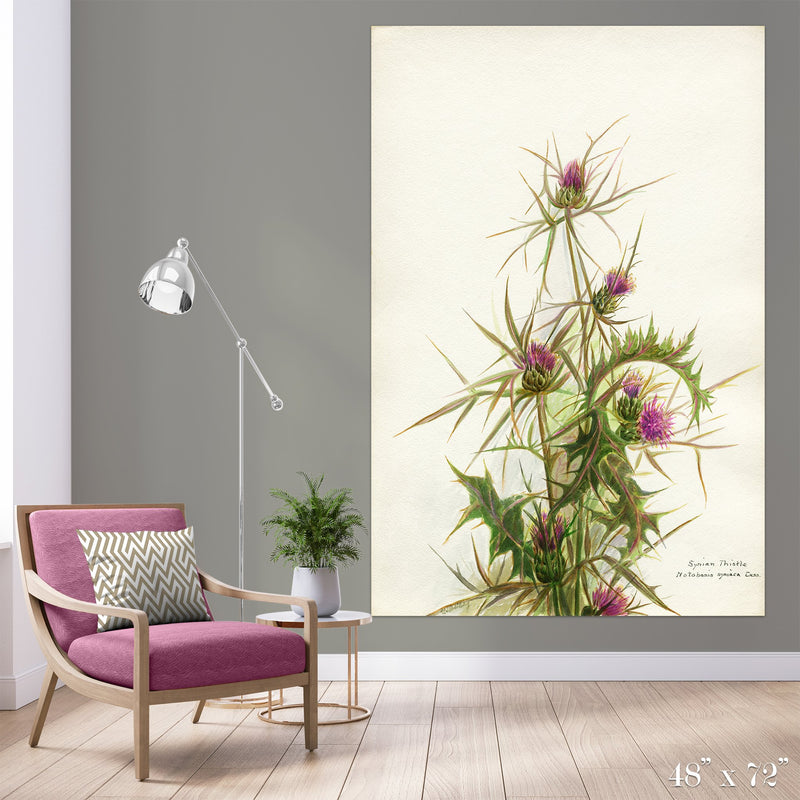 Thistle Colossal Art Print - Trendy Custom Wallpaper | Contemporary Wallpaper Designs | The Detroit Wallpaper Co.