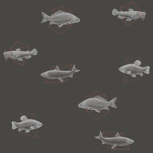 Geo Fish - Deep - Trendy Custom Wallpaper | Contemporary Wallpaper Designs | The Detroit Wallpaper Co.