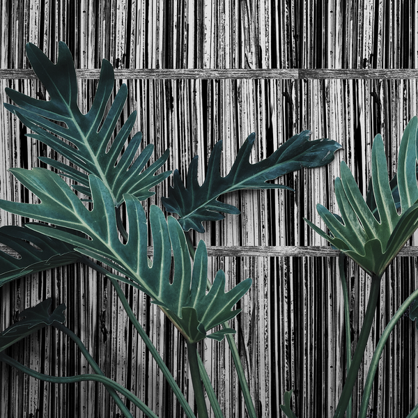 Record Shelf - Print - Trendy Custom Wallpaper | Contemporary Wallpaper Designs | The Detroit Wallpaper Co.